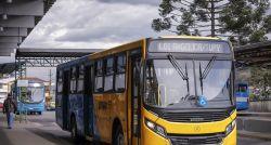 Transporte bom e barato ajuda no desenvolvimento social de Araucária